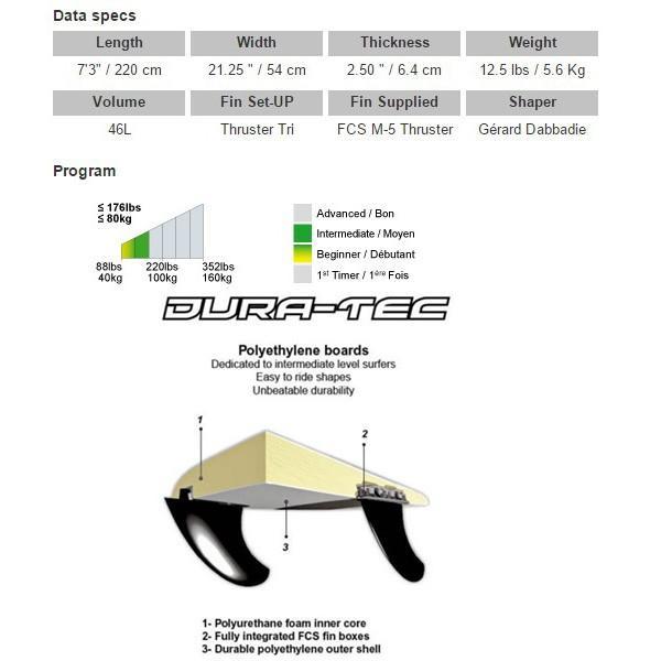 サーフィン 初心者 サーフボード ファンボード ビック BIC 7'3 DURA-TEC Mini Malibu SURF MOVE 別注 リミテッド|move|03