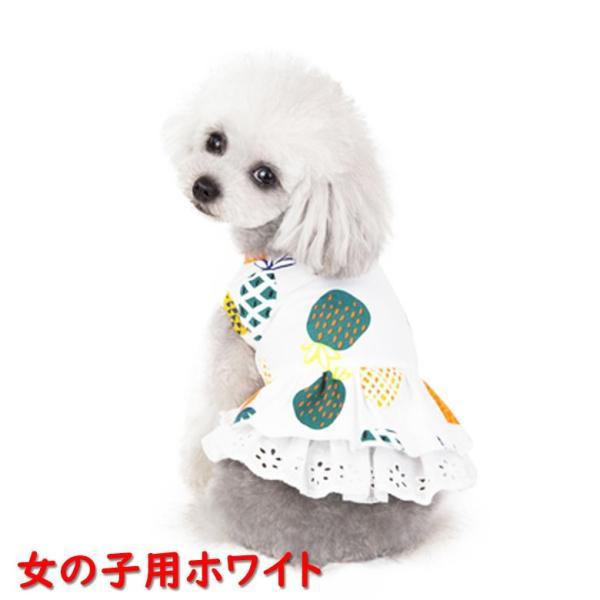 犬 犬服 犬の服 女の子用 男の子用 ワンピース スカート パイナップル かわいい dcos0029|mowmow0731|02