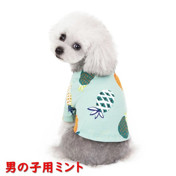 犬 犬服 犬の服 女の子用 男の子用 ワンピース スカート パイナップル かわいい dcos0029|mowmow0731|07