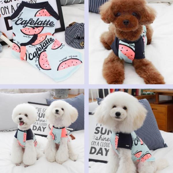 犬 服 犬服 夏用 クール Tシャツ シャツ つなぎ 春 夏 ペット服 かわいい おしゃれ スイカ 薄手 インスタ映え 小型犬 中型犬 大型犬 dts0012|mowmow0731|04