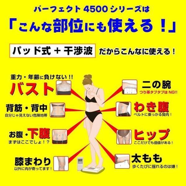 パーフェクト4500 emsマシン 干渉波 ダイエット 腹筋 ウェスト 筋トレ 日本製 EMS mrock 11