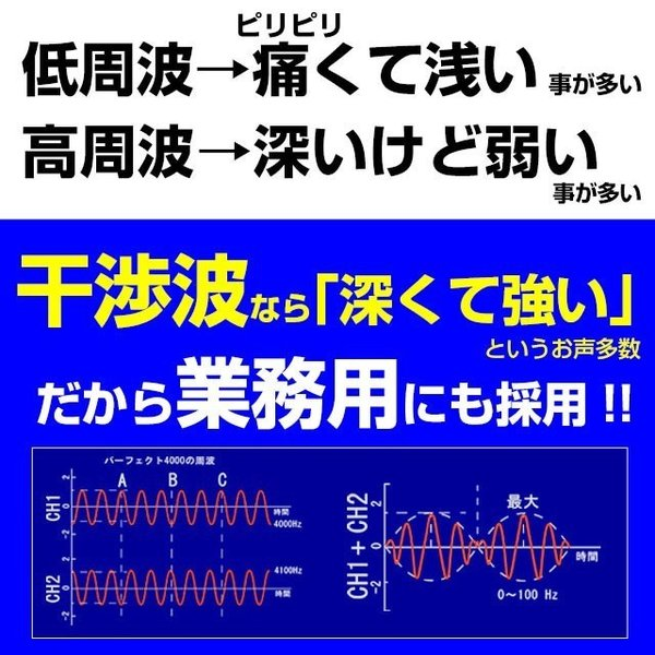 パーフェクト4500 emsマシン 干渉波 ダイエット 腹筋 ウェスト 筋トレ 日本製 EMS mrock 13