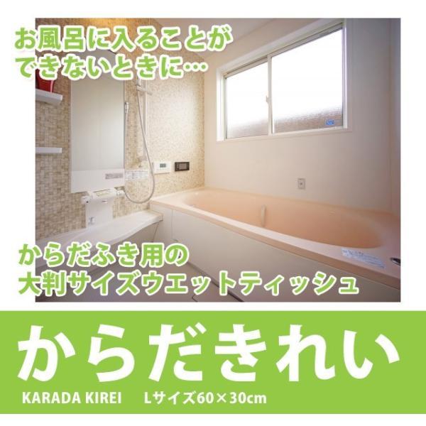 日本製 大判ウェットシート からだきれい 10枚1セット Lサイズ からだふき用ウエットティッシュ 入院時 介護時  防災グッズに (300089) (ms)|msstore-1147|02