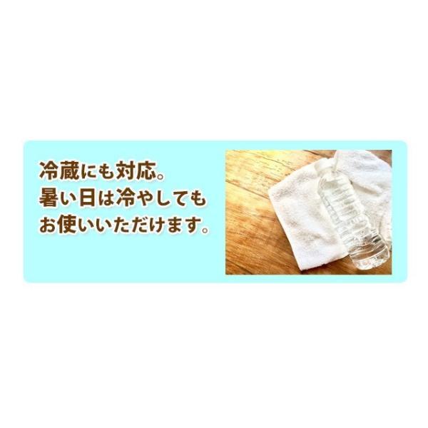 日本製 大判ウェットシート からだきれい 10枚1セット Lサイズ からだふき用ウエットティッシュ 入院時 介護時  防災グッズに (300089) (ms)|msstore-1147|11