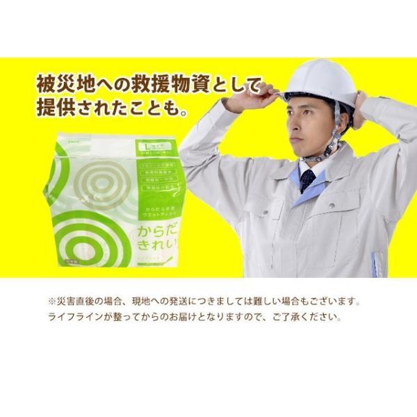 日本製 大判ウェットシート からだきれい 10枚1セット Lサイズ からだふき用ウエットティッシュ 入院時 介護時  防災グッズに (300089) (ms)|msstore-1147|12