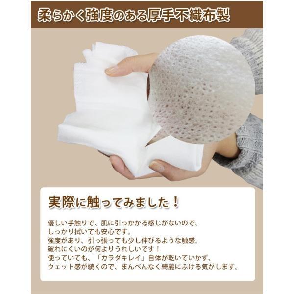 日本製 大判ウェットシート からだきれい 10枚1セット Lサイズ からだふき用ウエットティッシュ 入院時 介護時  防災グッズに (300089) (ms)|msstore-1147|08
