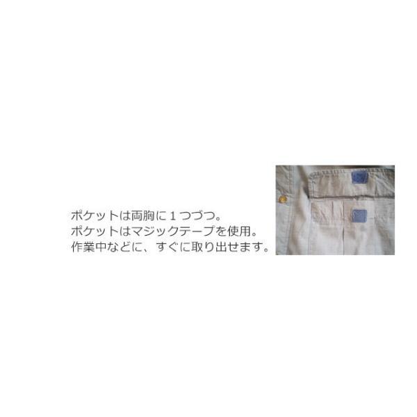 虫よけ  コットン シャツ メンズ インセクトシールド ヒアリ マダニ 虫除け (400067)(MT)|msstore-1147|04