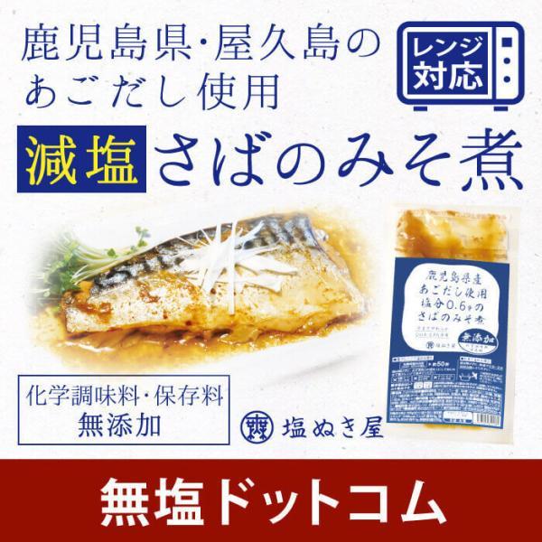 サバ 味噌 煮 塩