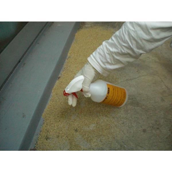ムカデ博士補強剤 ムカデ駆除剤 スプレータイプ 500ml ムカデをシャットダウン ムカデ対策 害虫駆除剤|mukadehakase|02