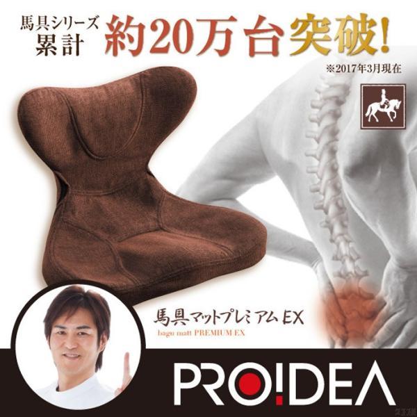 馬具マットプレミアムEX|muratakagu|12