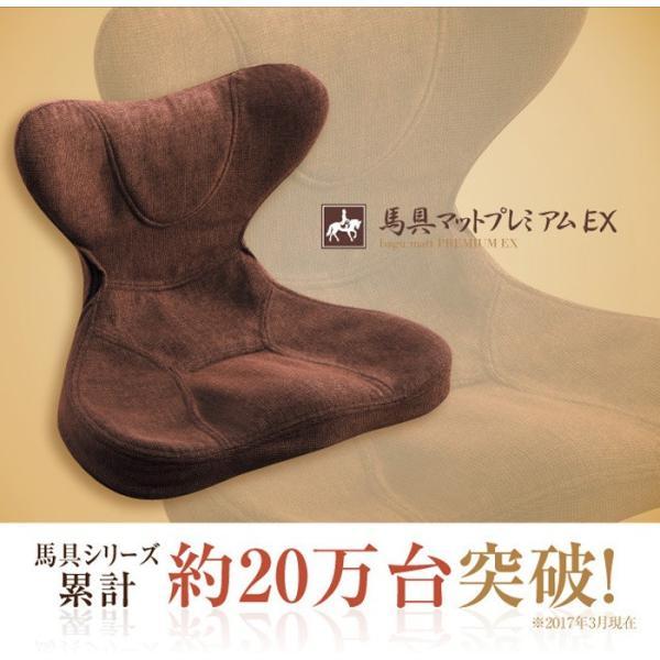 馬具マットプレミアムEX|muratakagu|04