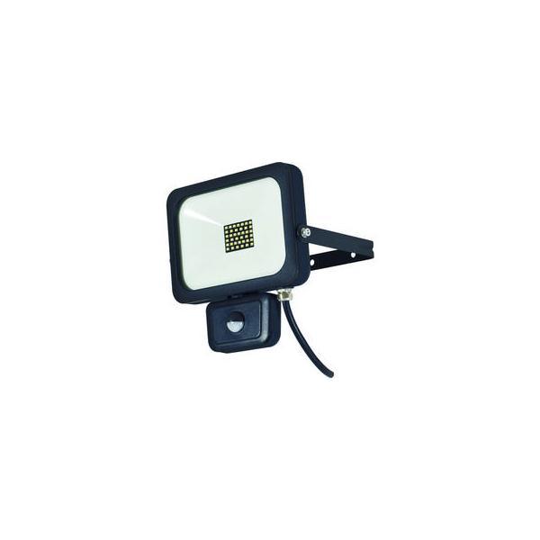 NICHIDO/日動工業  LEDセンサーライト フラットセンサーライト 30W 屋外型 2500Lm SLS-F30W