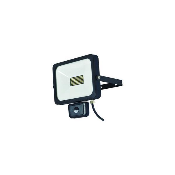 NICHIDO/日動工業  LEDセンサーライト フラットセンサーライト 50W 屋外型 4500Lm SLS-F50W