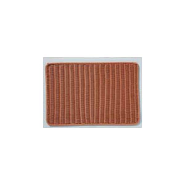 SHINDO/シンドー  抗菌樹脂すのこ DS113 60型 ブラウン