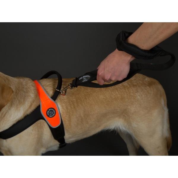 犬 リード 中型犬・大型犬用 トレ・ポンティ Double Safety Handle Leash 100cm|murol|02