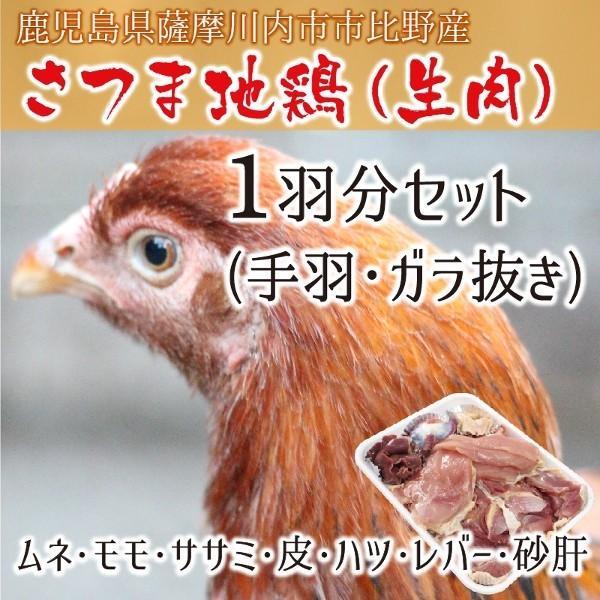通販 薩摩 地 鶏