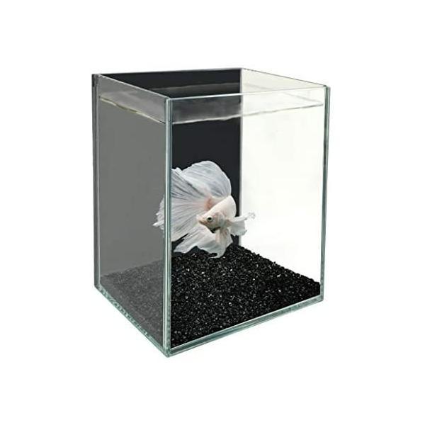 ジェックス水槽グラステリアベタブラック(ブラック-)