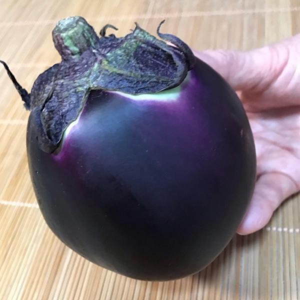 京野菜セットA|my-cs-kyoyasai-pj|05