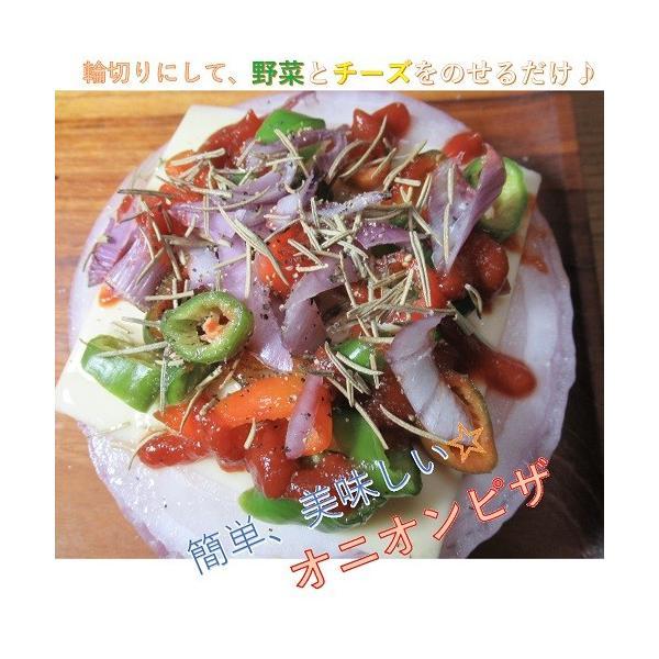 赤タマネギ 5kg|my-cs-kyoyasai-pj|06