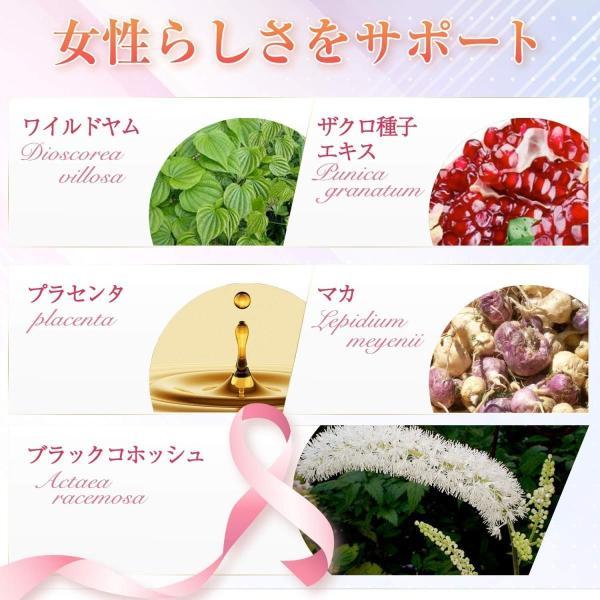 SweetPlus サプリメント 14種配合 30日分|myoumi|03