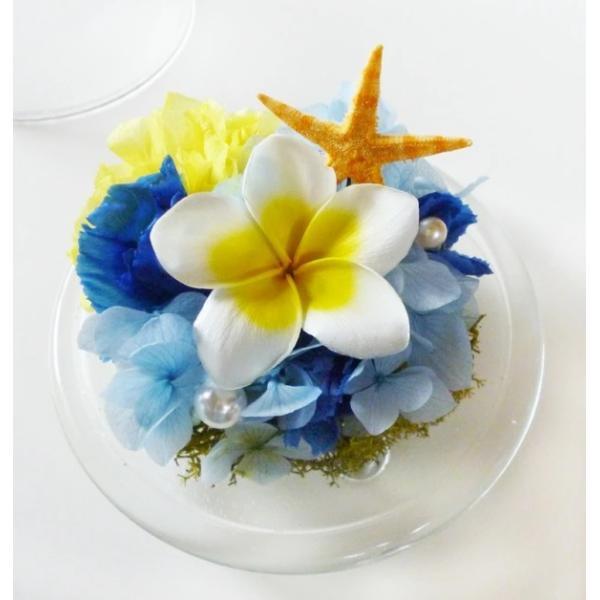 プリザーブドフラワー ドーム プルメリア うさぎ 誕生日 プレゼント 結婚祝い ハワイ ラビットアイランド|myperidot|03