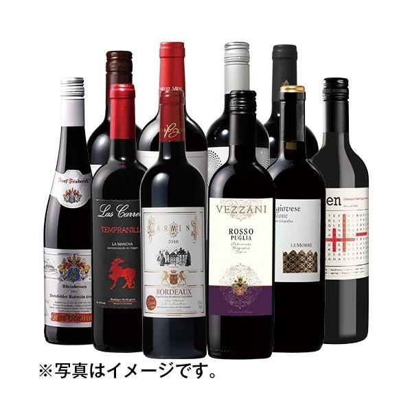 ワイン 赤ワインセット 世界デイリーワイン赤10本福袋 ワイン 送料無料