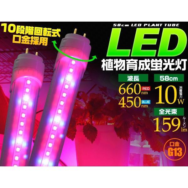 植物育成用LED蛍光灯 20W型/60cm グロー式工事不要 室内栽培 2年保証|n-style