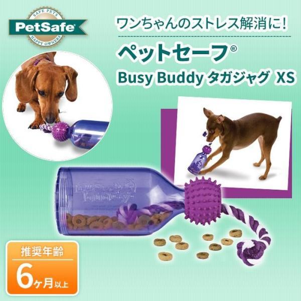 PetSafe Japan ペットセーフ Busy Buddy タガジャグ XS BB-TAJ-XS-18|nabike