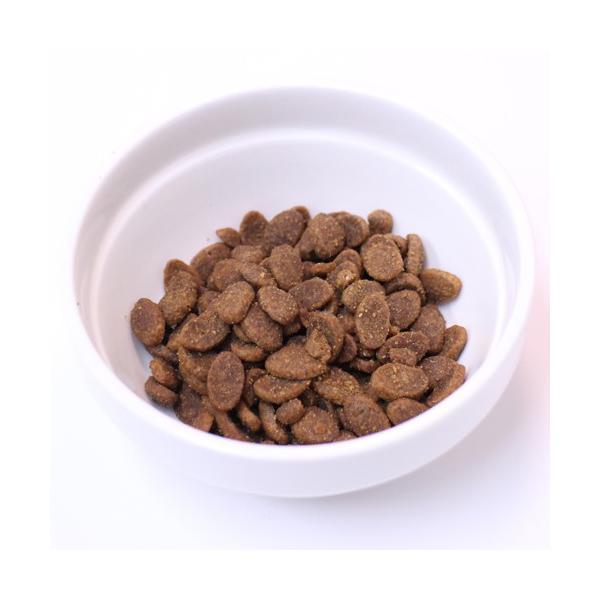 最短賞味2020.1.29・アニモンダ 猫用 フォムファインステン デラックス グレインフリー 1.75kg 83779 成猫用キャットフード ANIMONDA 正規品|nachu|03