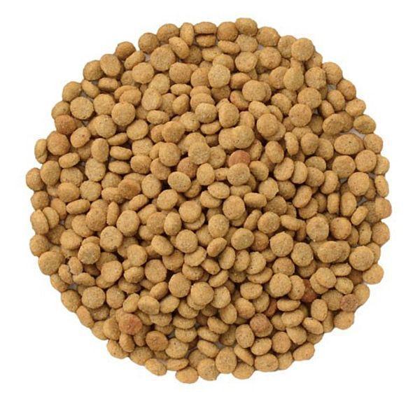 最短賞味2020.10・ナチュラルハーベスト キドニア 1.36kg×2個セット 腎臓ケア対応ドッグフード Natural Harvest 正規品 nh05987s2|nachu|02