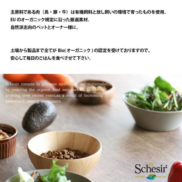 最短賞味2021.8・シシア 猫 BIOパウチ チキン 85g scc420総合栄養食オーガニックキャットフード|nachu|05