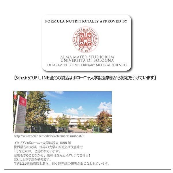 NEW 最短賞味2021.12・シシア 猫 スープ(ツナ&パパイヤ)85g scc675|nachu|06