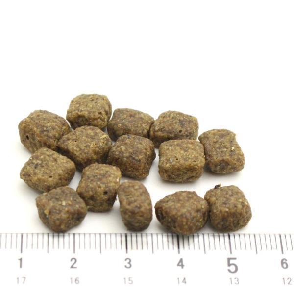 NEW 最短賞味2020.9.10・ウルフブラット ディープグレード・SB 500g 小型犬用小粒ドッグフード WOLFSBLUT 正規品 wb66120|nachu|02
