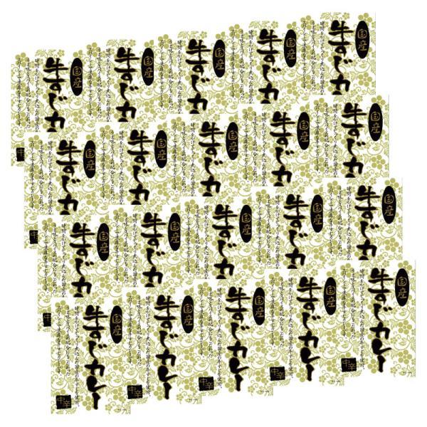 国産牛すじカレー KGS-100(レトルトカレー レトルト食品) 内祝い 結婚内祝い 出産内祝い 景品 引き出物 お返し お歳暮 御歳暮 ギフト