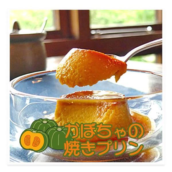 かぼちゃの手作り焼きプリン 6個/箱 − どん・るーかす