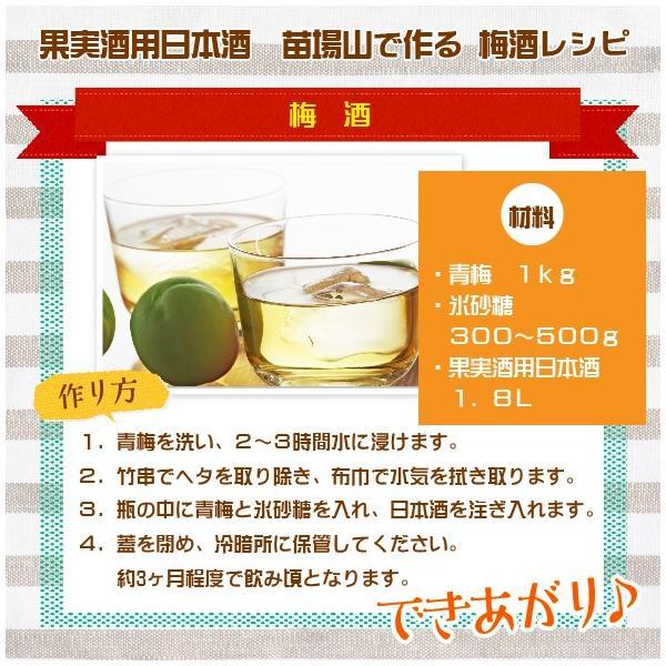 果実酒用 梅酒用 日本酒 1800ml  ホワイトリカーより最適 naebasyuzo 05