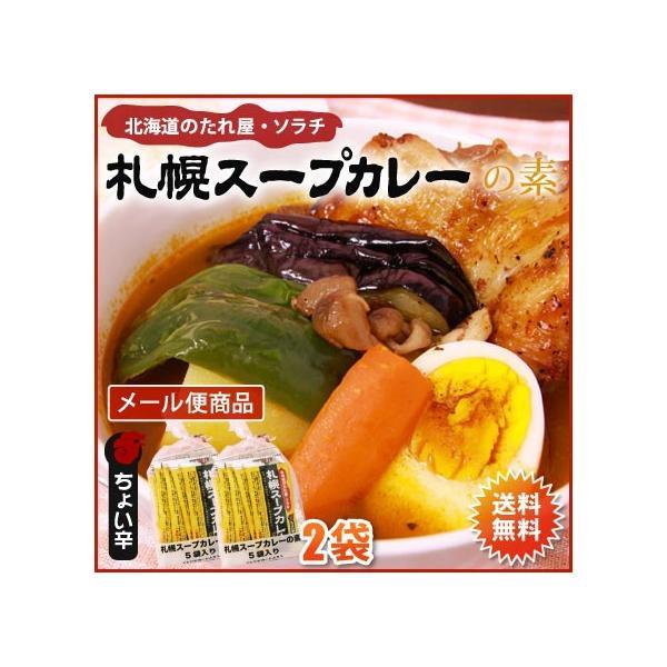 スープカレー素ソラチ札幌スープカレーの素10袋(10食分)メール便