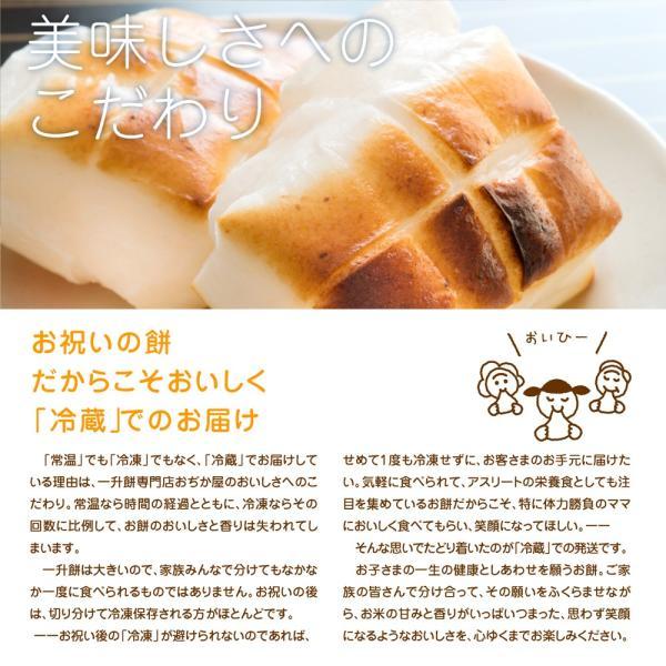 一升餅 セット 小分け も選べお祝いに必要な物が全て揃う 書道有段者による 名前入り 一升餅 選び取りカード リュック ガーランド 掛け紙 説明書 きなこ★|nagasaki-ojikaya|18