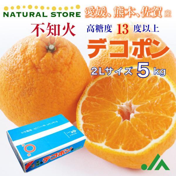 デコポン 5キロ 愛媛県産 佐賀県産 熊本県産 2Lサイズ 最上級品!|nagashimastore7