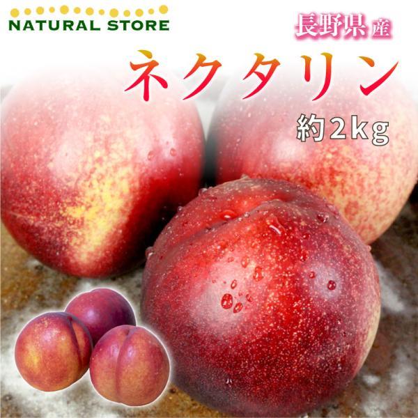 ネクタリン プラム 約2kg 長野県産 プラム すもも 桃 フルーツ 果実 果物 プレゼント 贈り物 ギフト 通販 [最短順次発送]