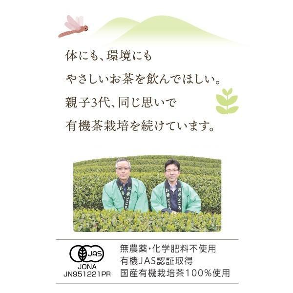 有機国産べにふうき烏龍茶(リーフ)100g 和烏龍茶 ORGANIC JAPANESE Oolong tea leaf|nagata-chaen|03