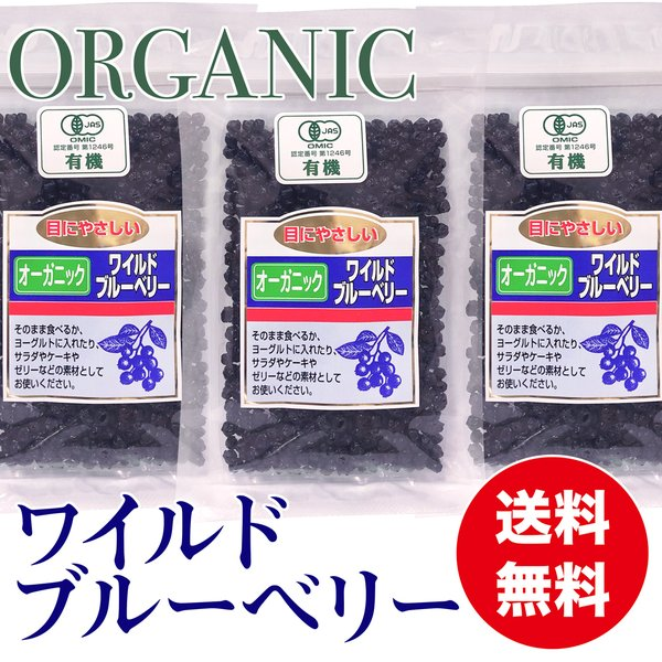 オーガニック ワイルドブルーベリー 100g ×3袋 有機ドライブルーベリー 乾燥フルーツ