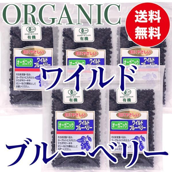 オーガニック ワイルドブルーベリー 100g ×5袋 有機ドライブルーベリー 乾燥フルーツ