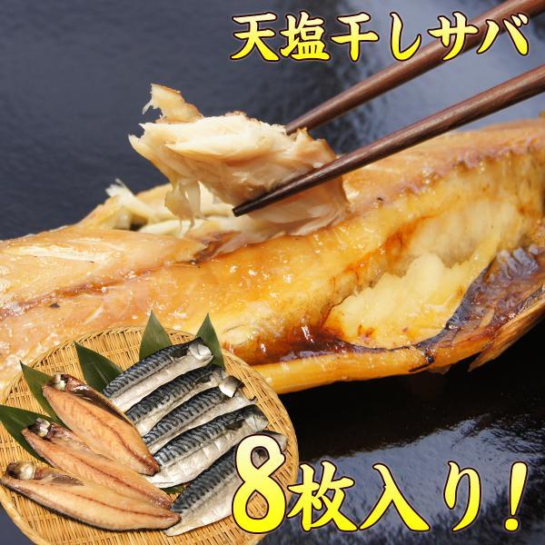 さば サバ 鯖 千葉県産 天塩干しサバ 約170g×8枚セット♪晩ご飯のおかずに是非(同梱 干物 魚) 国産