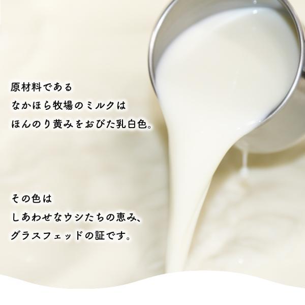 飲むヨーグルト プレーン 500ml 無糖 のむヨーグルト 無添加 お取り寄せ [冷蔵便]|nakahora-bokujou|02