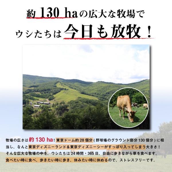 飲むヨーグルト プレーン 500ml 無糖 のむヨーグルト 無添加 お取り寄せ [冷蔵便]|nakahora-bokujou|09