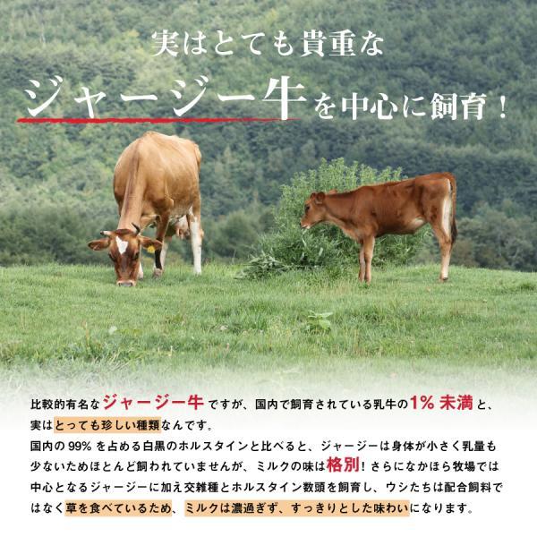 中洞牧場のむヨーグルト 山のきぶどう〔130 ml〕[冷蔵便] 飲むヨーグルト 自然放牧 ジャージー 無添加 青空レストラン 乳製品 名物 お歳暮|nakahora-bokujou|04