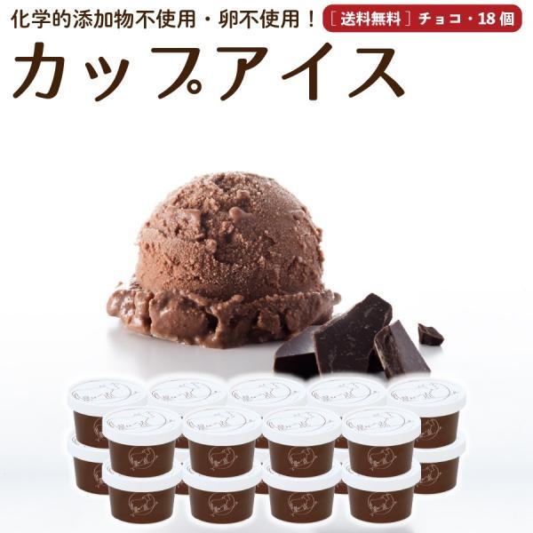 お歳暮 お祝い 内祝 熨斗 誕生日 アイスクリーム 詰め合わせ チョコレート 18個 ギフト お菓子 スイーツ 卵不使用 無添加 送料無料 [冷凍便] gift
