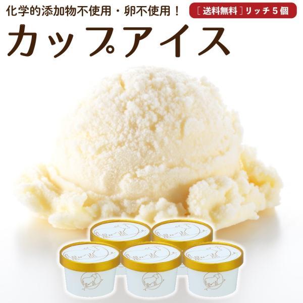 アイスクリーム 詰め合わせ クリームリッチ 5個  お中元 ギフト お菓子 スイーツ 卵不使用 無添加 送料無料 [冷凍便]  nov