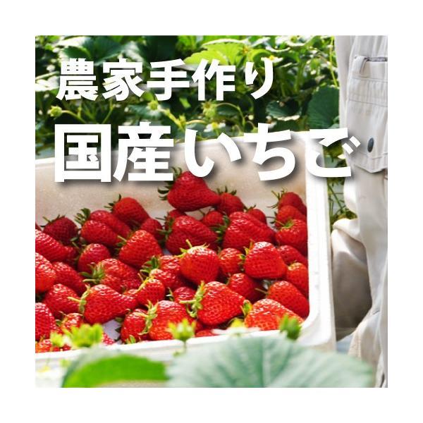 和歌山の農家手作り国産いちご